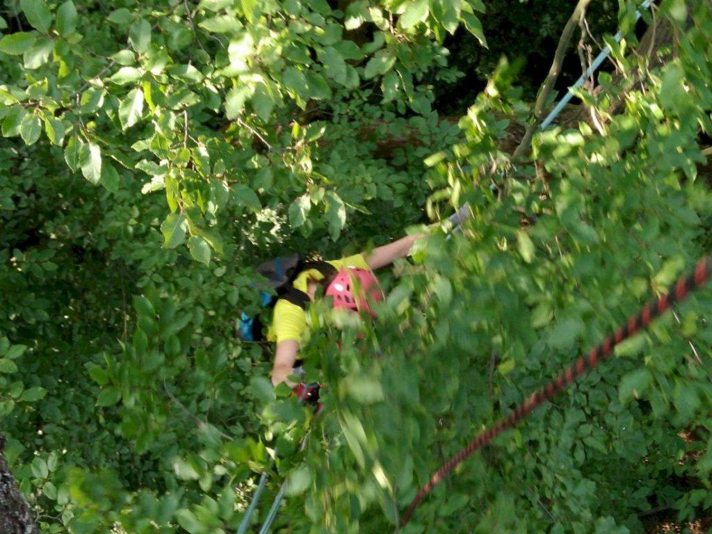 misja-drzewa-wspinaczka-drzewna-9