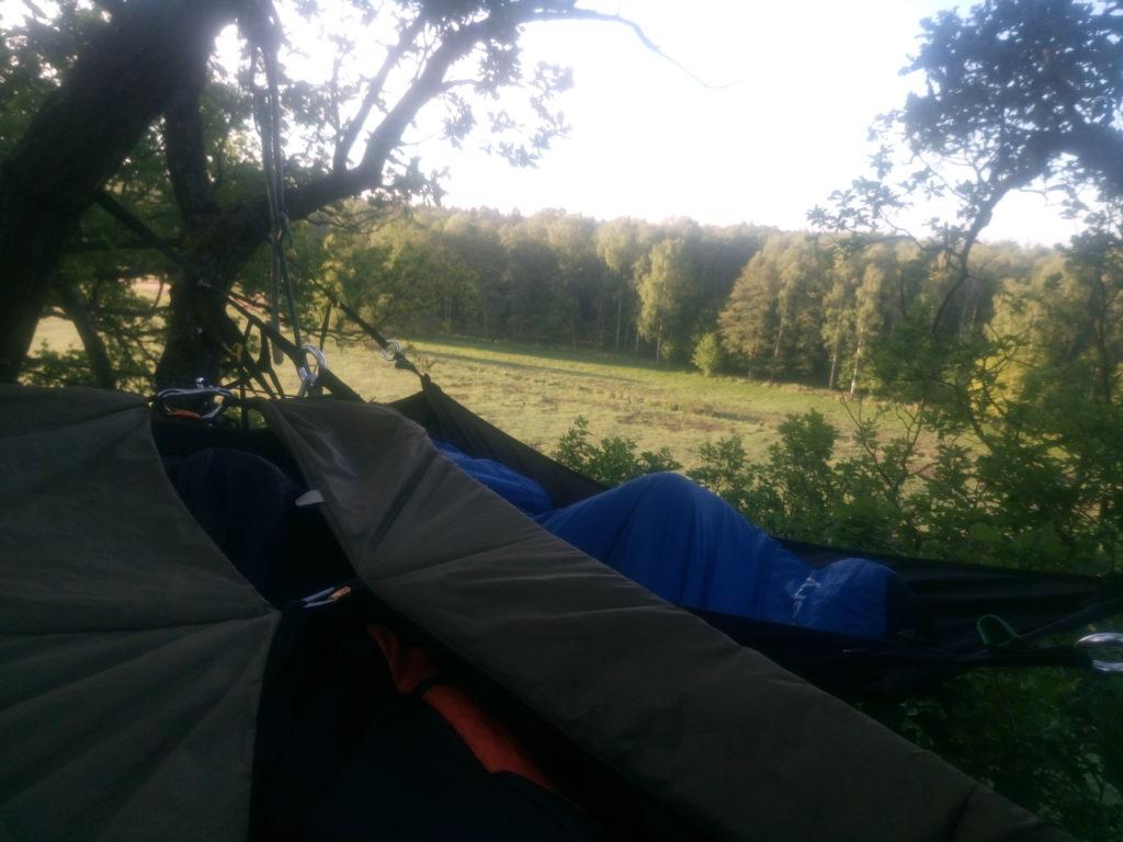 nocowanie na drzewie