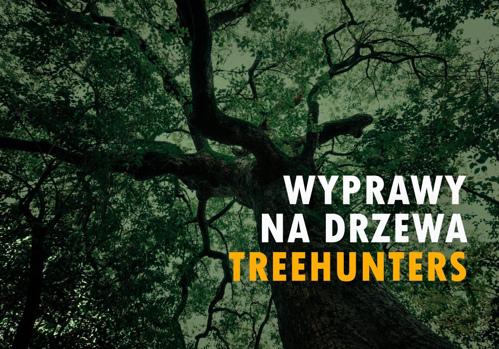 Wyprawy na drzewa Treehunters